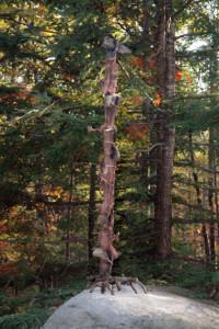 #51 Witch Way -That a Way - Paul Munson, Virginia, USA