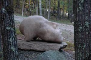 #70 Conscious - Isadore Batu Siharulidze, Republic of Georgia / Massachusetts, USA