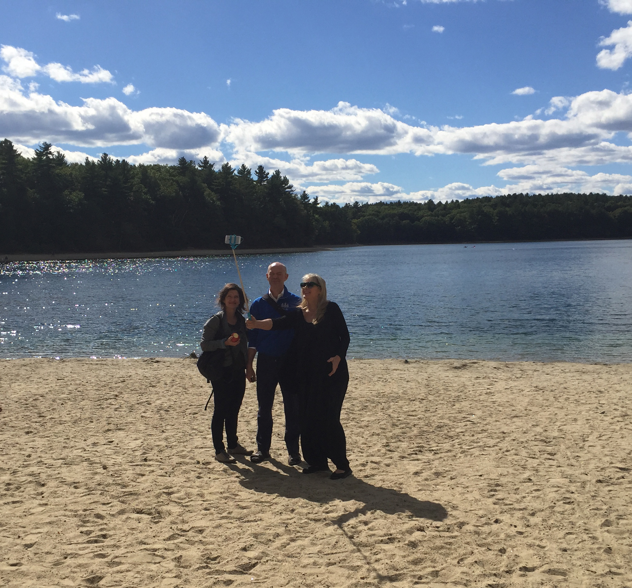 2016 Artists at Walden Pond
